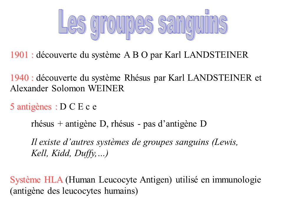 1901 : 1901 : découverte du système A B O par Karl LANDSTEINER 1940 : 1940 : découverte du système Rhésus par Karl LANDSTEINER et Alexander Solomon WEINER Il existe d'autres systèmes de groupes sanguins (Lewis, Kell, Kidd, Duffy,…) 5 antigènes : 5 antigènes : D C E c e rhésus + antigène D, rhésus - pas d'antigène D Système HLA Système HLA (Human Leucocyte Antigen) utilisé en immunologie (antigène des leucocytes humains)