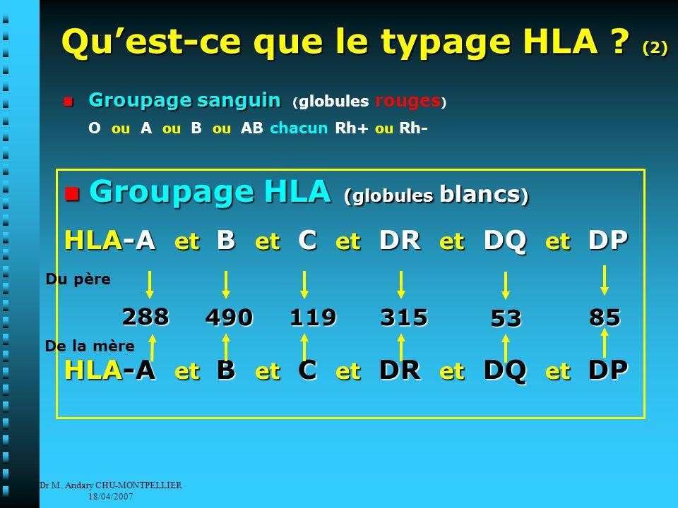 Dr M. Andary CHU-MONTPELLIER 18/04/2007 Qu'est-ce que le typage HLA .