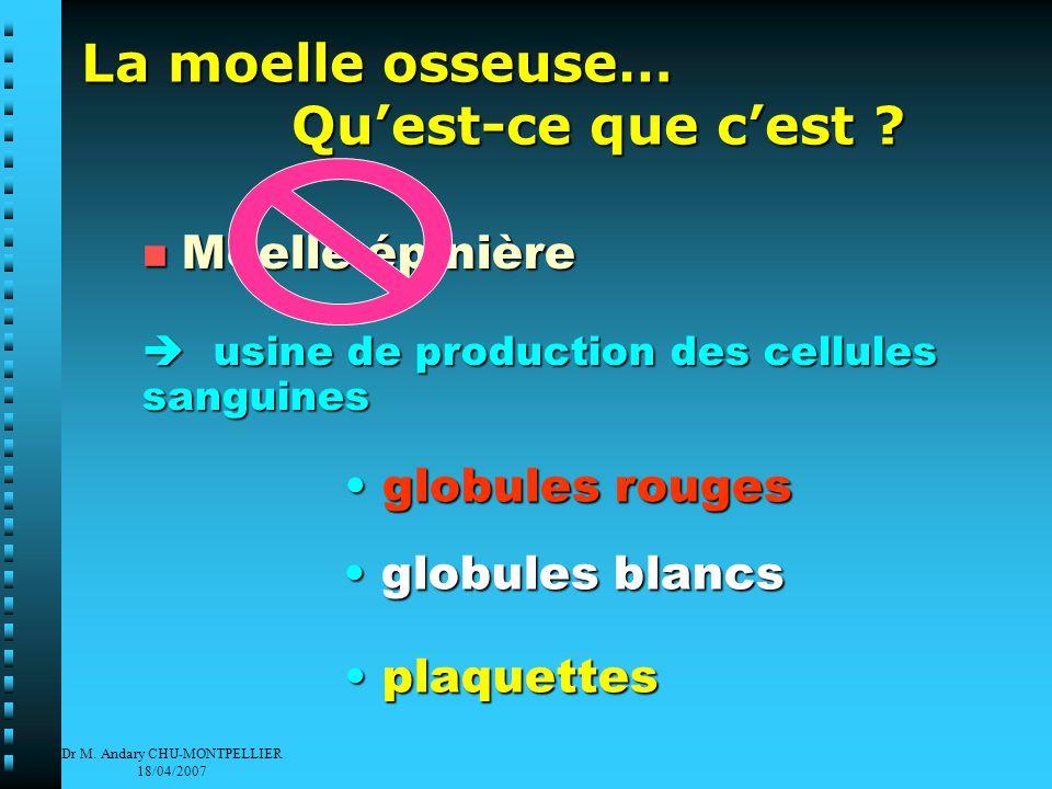 Dr M. Andary CHU-MONTPELLIER 18/04/2007 SANG GR PMN Mono Ly Pl GB Cellule souche