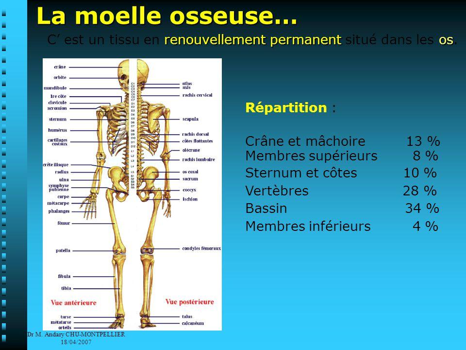 Dr M.Andary CHU-MONTPELLIER 18/04/2007 Comment se fait une greffe de moelle osseuse .