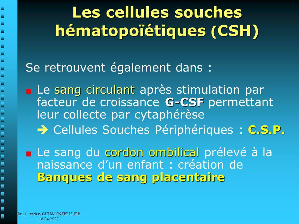 Dr M.Andary CHU-MONTPELLIER 18/04/2007 Comment se fait un prélèvement de moelle osseuse .