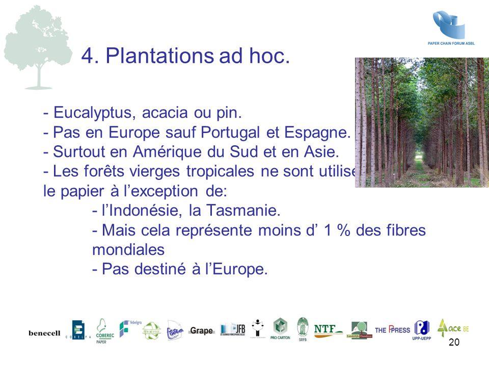 - Eucalyptus, acacia ou pin. - Pas en Europe sauf Portugal et Espagne. - Surtout en Amérique du Sud et en Asie. - Les forêts vierges tropicales ne son