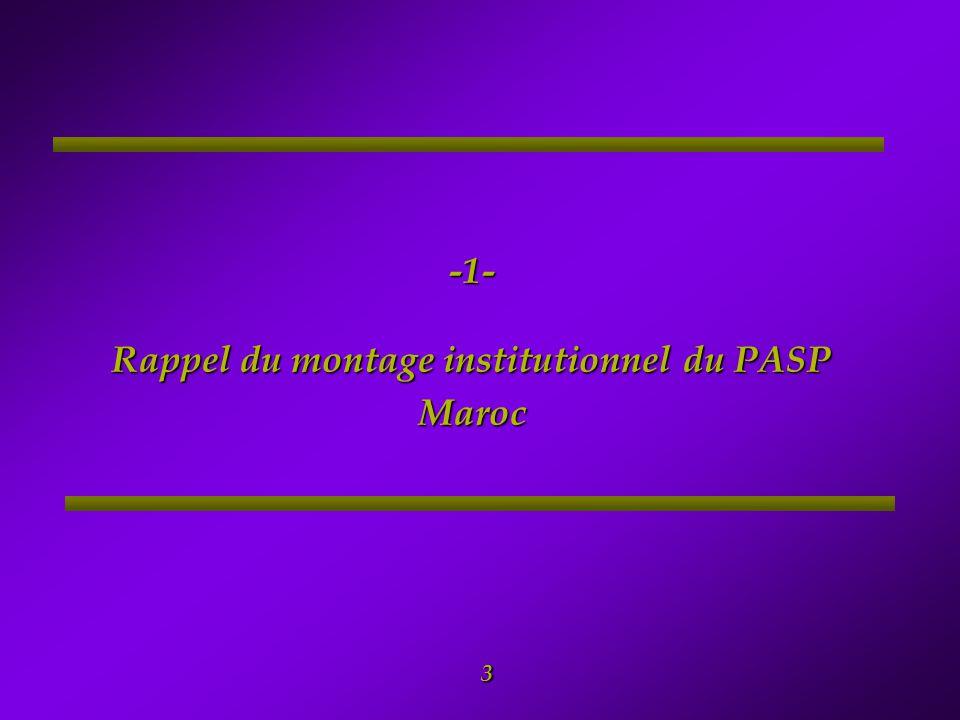 4 1- Rappel du montage institutionnel du PASP Comité National de Pilotage (CNP) Ce comité sera créé pour la durée du projet et sera présidé par le Ministre de l'Agriculture, du Développement Rural et des Pêches Maritimes Ce comité sera chargé de la coordination, de la mise en cohérence et du suivi des activités du PASP - Maroc.