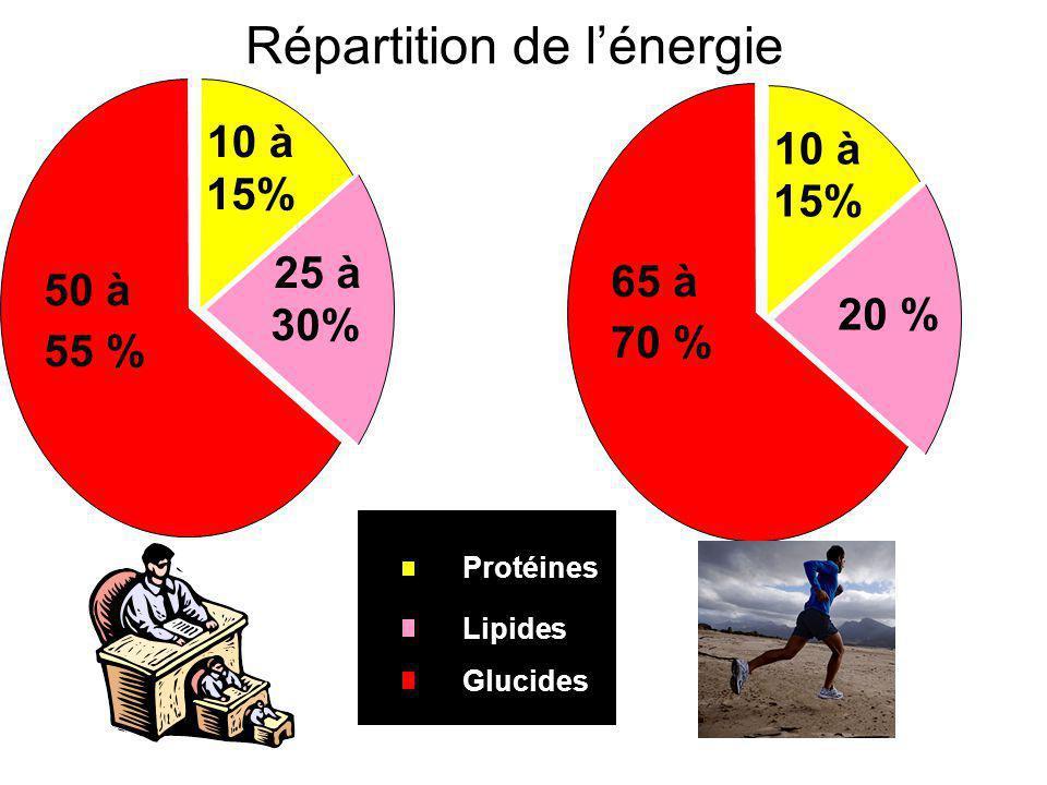 Répartition de l'énergie 25 à25 à 30% 10 à 15% 50 à 55 % Protéines Lipides Glucides 20 % 10 à 15% 65 à 70 %