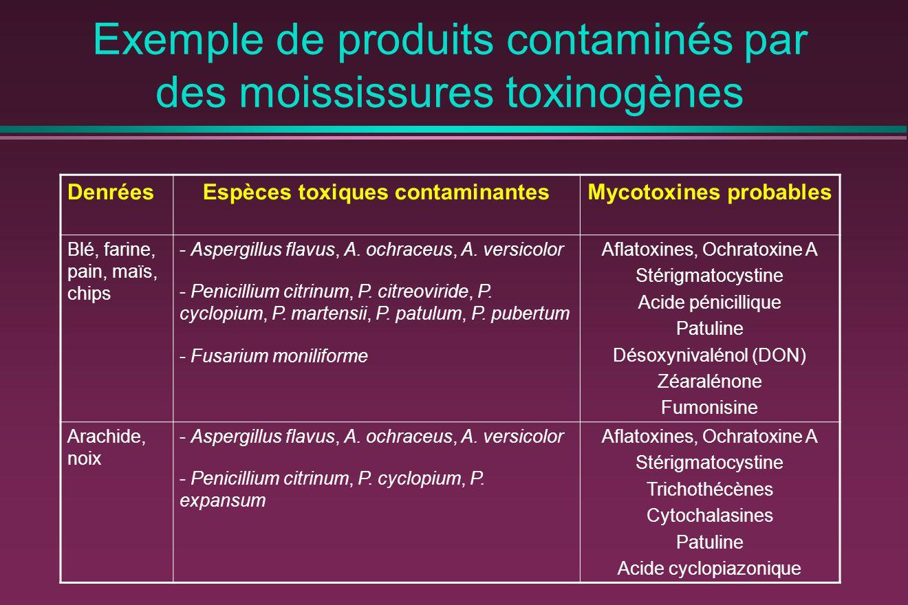 Exemple de produits contaminés par des moississures toxinogènes DenréesEspèces toxiques contaminantesMycotoxines probables Blé, farine, pain, maïs, chips - Aspergillus flavus, A.