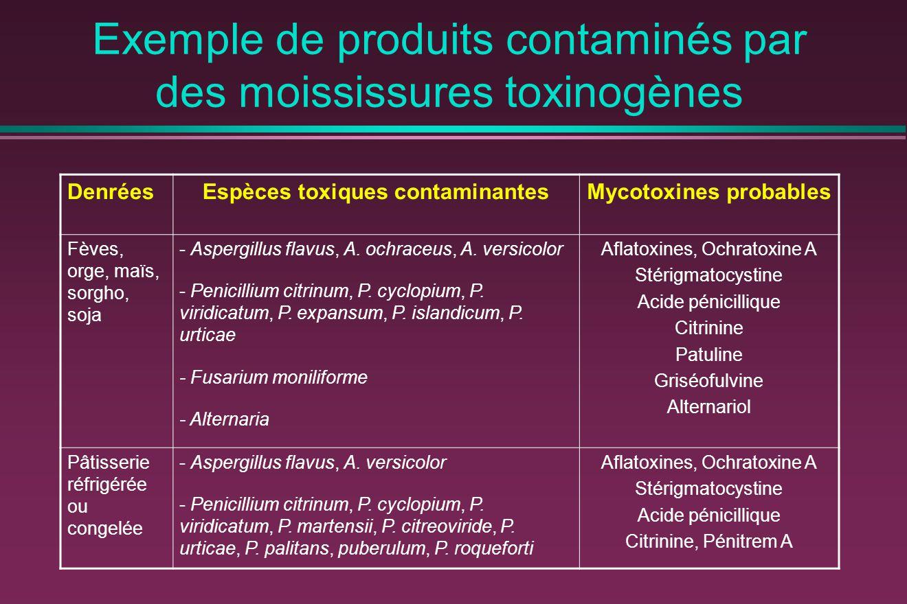 Exemple de produits contaminés par des moississures toxinogènes DenréesEspèces toxiques contaminantesMycotoxines probables Fèves, orge, maïs, sorgho, soja - Aspergillus flavus, A.