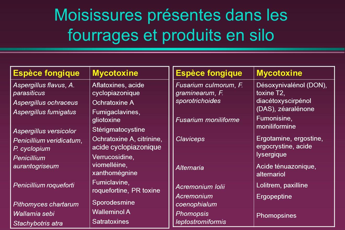 Moisissures présentes dans les fourrages et produits en silo Espèce fongiqueMycotoxine Aspergillus flavus, A.