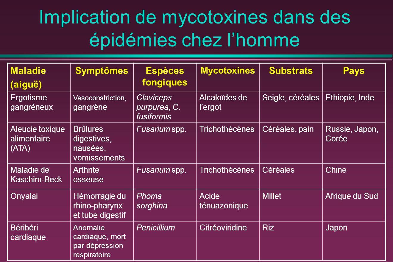 Implication de mycotoxines dans des épidémies chez l'homme Maladie (aiguë) SymptômesEspèces fongiques Mycotoxines SubstratsPays Ergotisme gangréneux Vasoconstriction, gangrène Claviceps purpurea, C.
