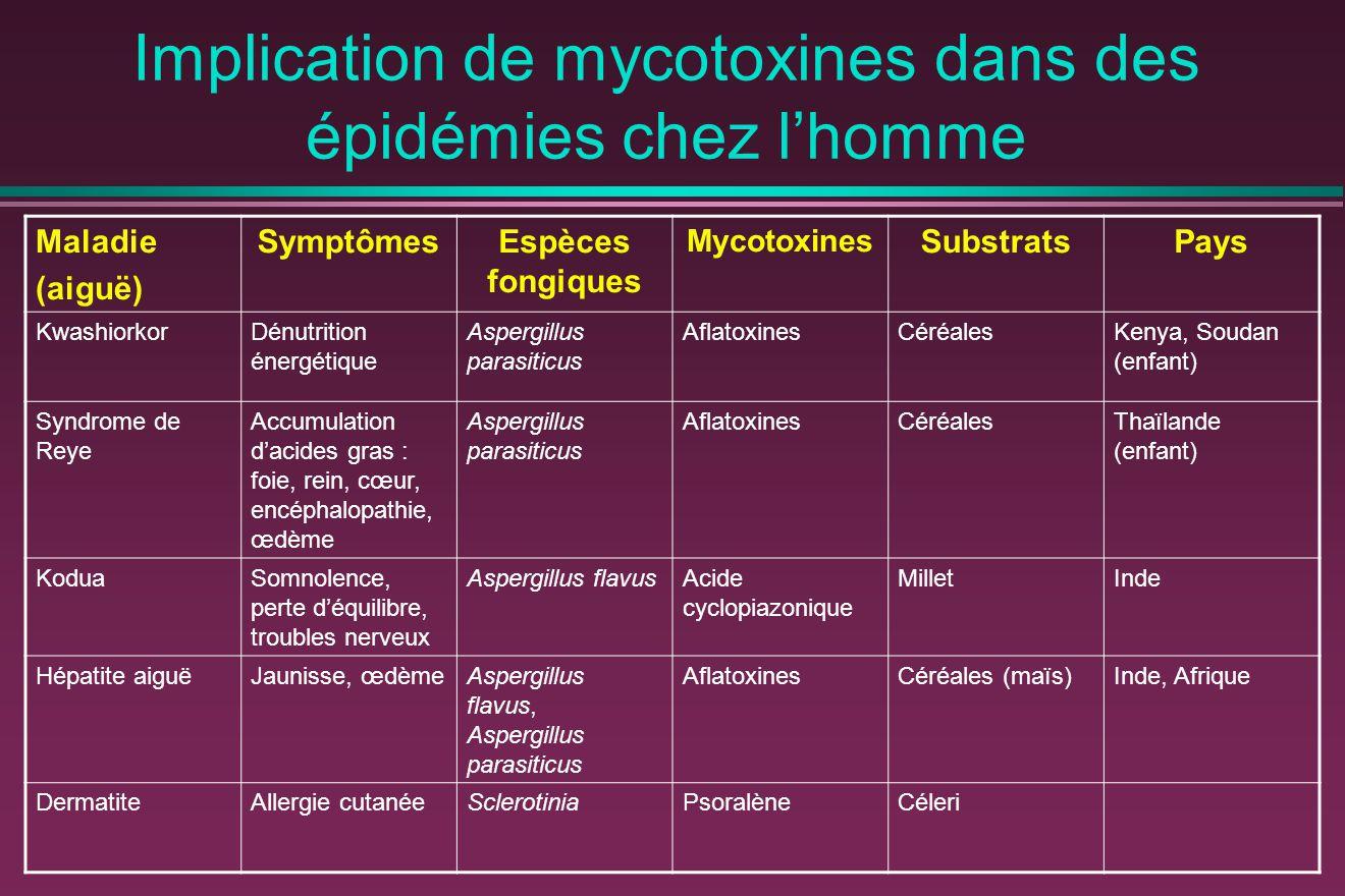 Implication de mycotoxines dans des épidémies chez l'homme Maladie (aiguë) SymptômesEspèces fongiques Mycotoxines SubstratsPays KwashiorkorDénutrition énergétique Aspergillus parasiticus AflatoxinesCéréalesKenya, Soudan (enfant) Syndrome de Reye Accumulation d'acides gras : foie, rein, cœur, encéphalopathie, œdème Aspergillus parasiticus AflatoxinesCéréalesThaïlande (enfant) KoduaSomnolence, perte d'équilibre, troubles nerveux Aspergillus flavusAcide cyclopiazonique MilletInde Hépatite aiguëJaunisse, œdèmeAspergillus flavus, Aspergillus parasiticus AflatoxinesCéréales (maïs)Inde, Afrique DermatiteAllergie cutanéeSclerotiniaPsoralèneCéleri