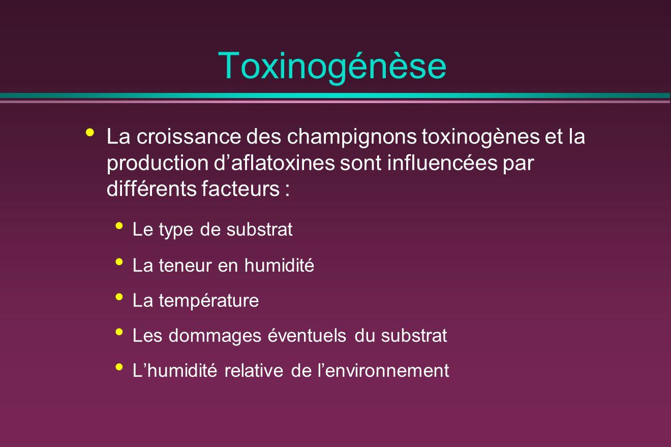 Toxinogénèse La croissance des champignons toxinogènes et la production d'aflatoxines sont influencées par différents facteurs : Le type de substrat La teneur en humidité La température Les dommages éventuels du substrat L'humidité relative de l'environnement