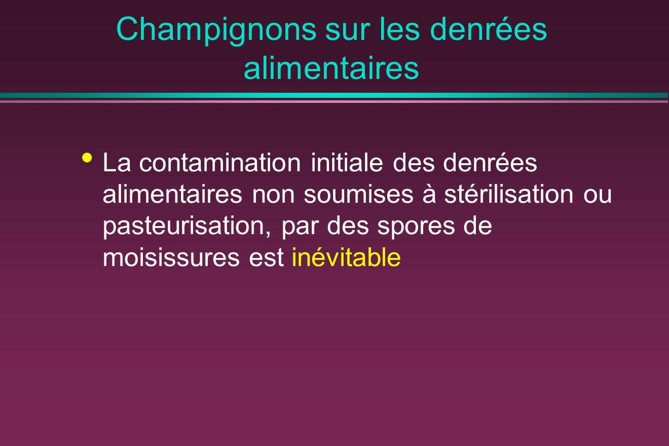 Champignons sur les denrées alimentaires La contamination initiale des denrées alimentaires non soumises à stérilisation ou pasteurisation, par des spores de moisissures est inévitable