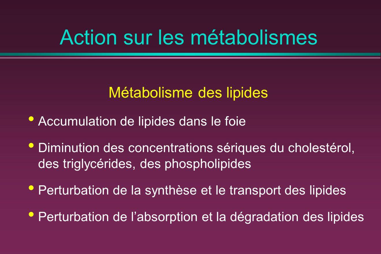 Action sur les métabolismes Métabolisme des lipides Accumulation de lipides dans le foie Diminution des concentrations sériques du cholestérol, des triglycérides, des phospholipides Perturbation de la synthèse et le transport des lipides Perturbation de l'absorption et la dégradation des lipides