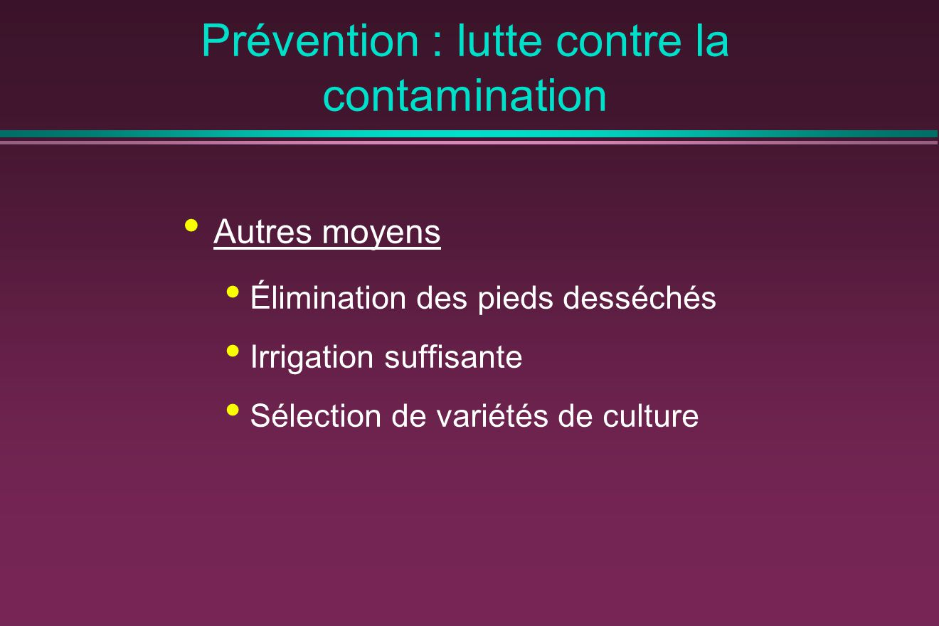 Prévention : lutte contre la contamination Autres moyens Élimination des pieds desséchés Irrigation suffisante Sélection de variétés de culture