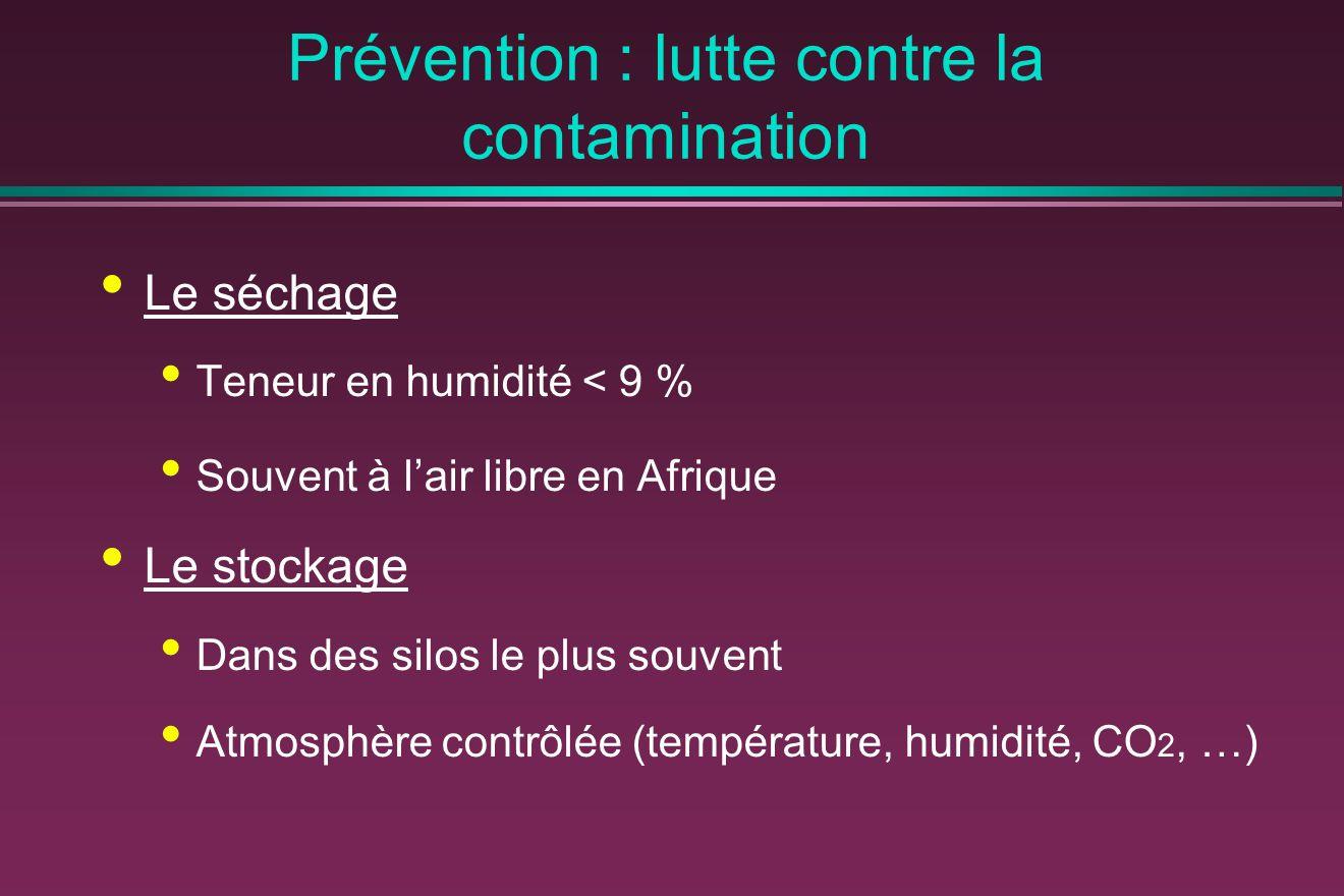 Prévention : lutte contre la contamination Le séchage Teneur en humidité < 9 % Souvent à l'air libre en Afrique Le stockage Dans des silos le plus souvent Atmosphère contrôlée (température, humidité, CO 2, …)