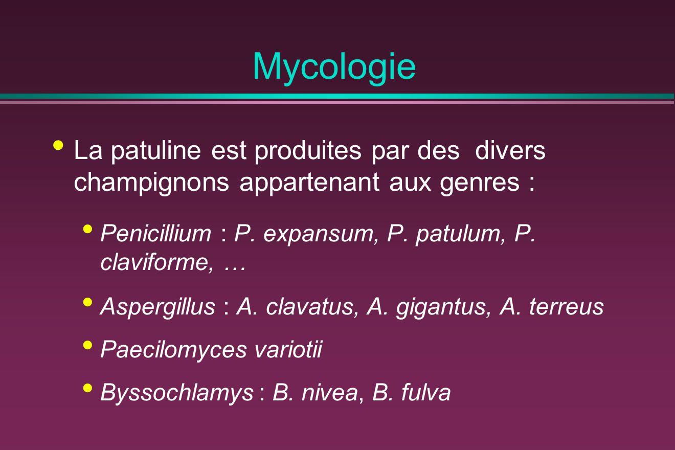 Mycologie La patuline est produites par des divers champignons appartenant aux genres : Penicillium : P.