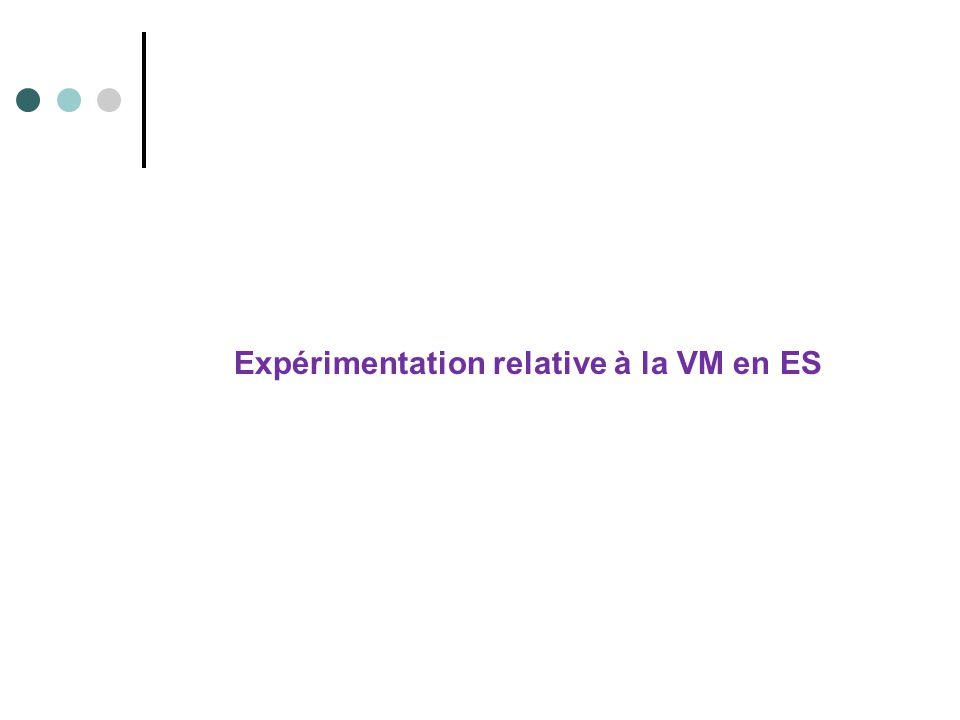 Expérimentation relative à la VM en ES