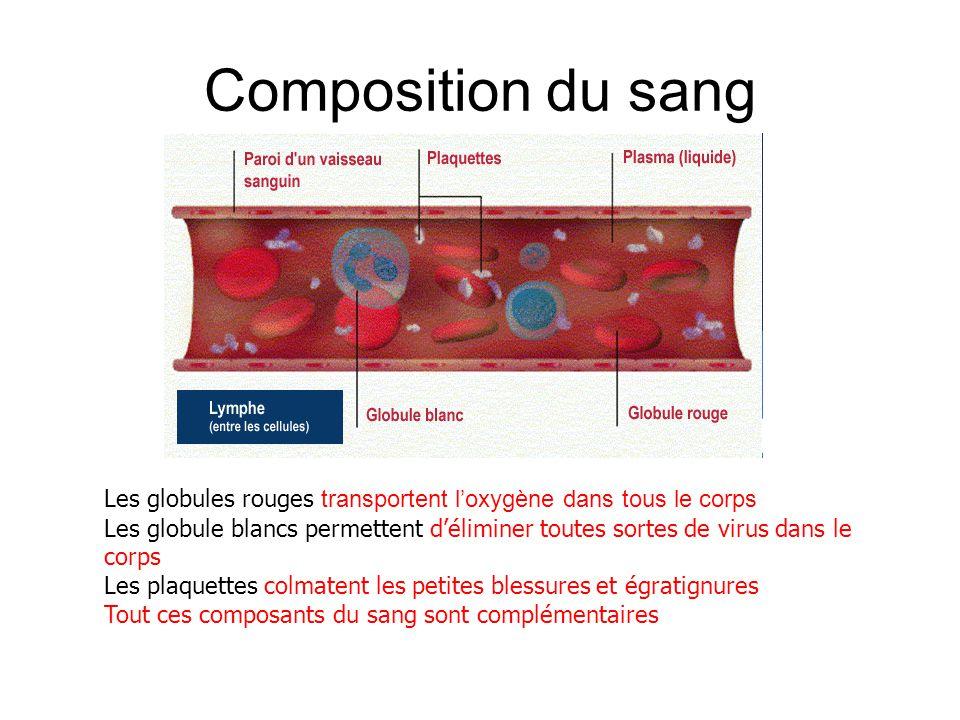 Composition du sang Les globules rouges transportent l'oxygène dans tous le corps Les globule blancs permettent d'éliminer toutes sortes de virus dans