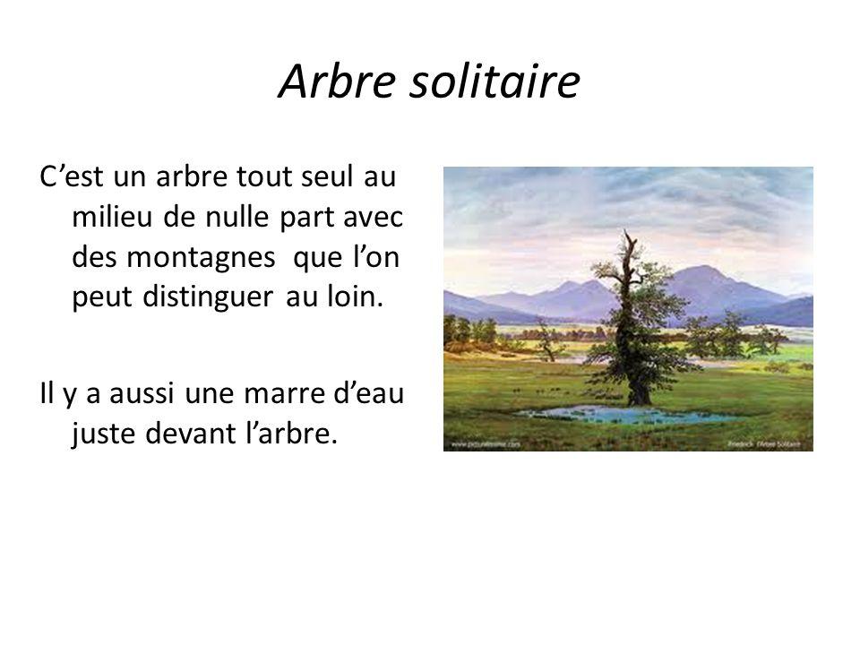 Arbre solitaire C'est un arbre tout seul au milieu de nulle part avec des montagnes que l'on peut distinguer au loin. Il y a aussi une marre d'eau jus