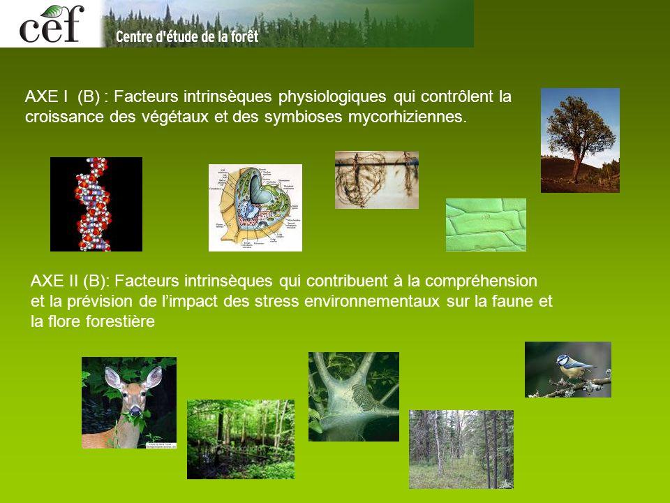 AXE I (B) : Facteurs intrinsèques physiologiques qui contrôlent la croissance des végétaux et des symbioses mycorhiziennes. AXE II (B): Facteurs intri