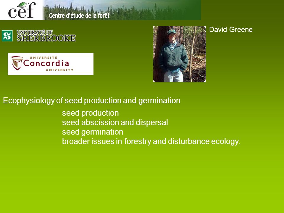 David Greene Ecophysiology of seed production and germination seed production seed abscission and dispersal seed germination broader issues in forestr