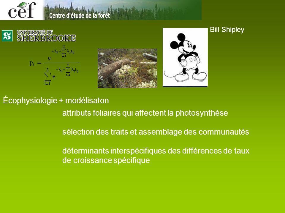 Bill Shipley Écophysiologie + modélisaton attributs foliaires qui affectent la photosynthèse sélection des traits et assemblage des communautés déterminants interspécifiques des différences de taux de croissance spécifique