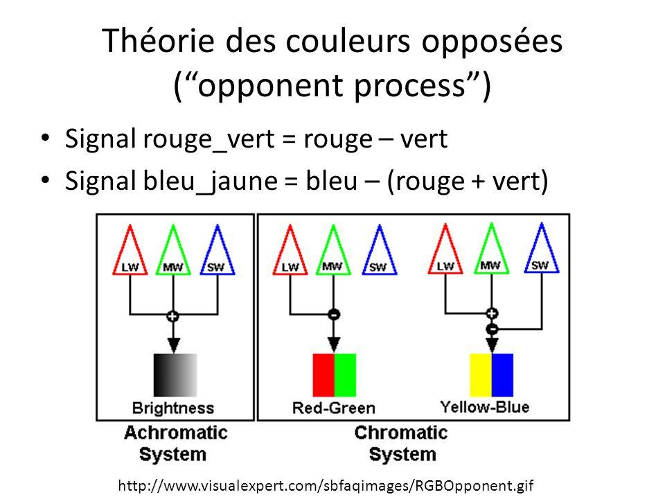 """Théorie des couleurs opposées (""""opponent process"""") Signal rouge_vert = rouge – vert Signal bleu_jaune = bleu – (rouge + vert) http://www.visualexpert."""