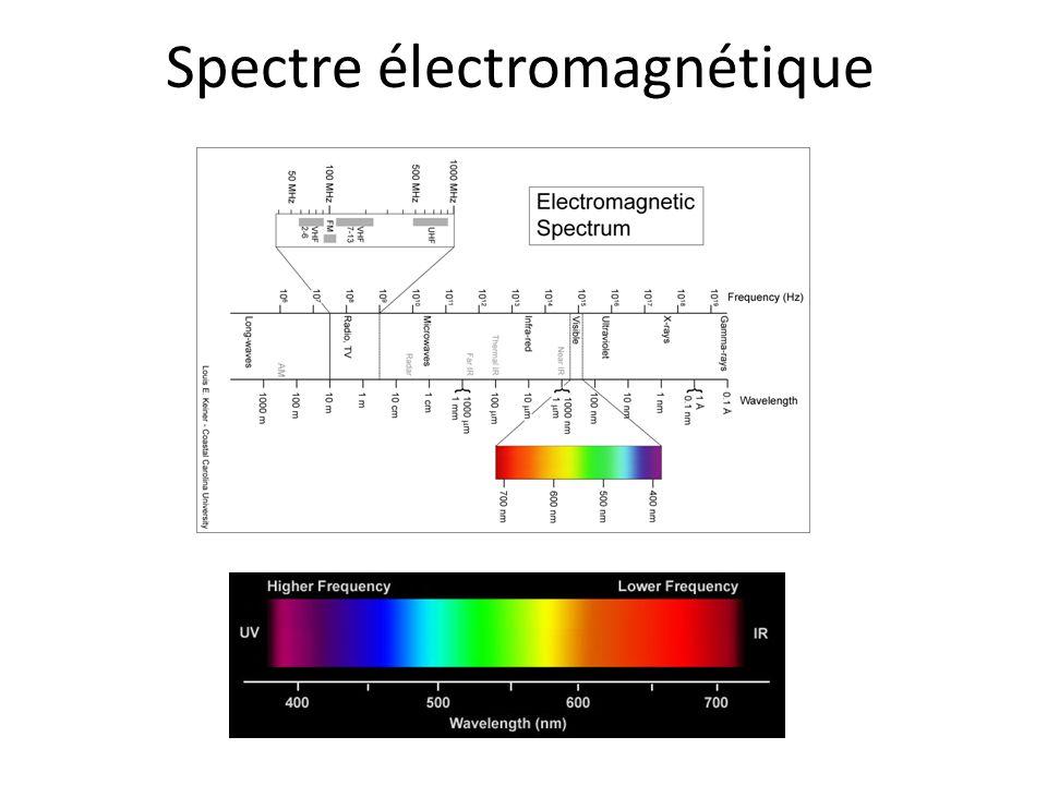 Comparaison: l'ouïe versus la vue Plus de 1000 fréquences différentes sont captées en même temps; un échantillonnage relativement riche du timbre du son Aucune formation d'image Seulement trois (bandes de) fréquences sont captées en même temps Formation d'une image de ≈10 6 pixels (un nombre très approximatif)