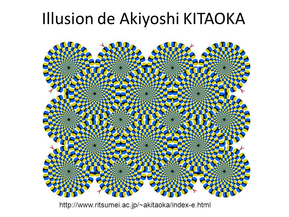 Illusion de Akiyoshi KITAOKA http://www.ritsumei.ac.jp/~akitaoka/index-e.html