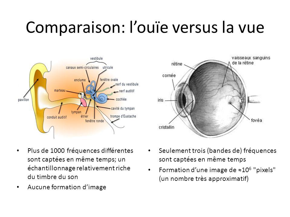 Comparaison: l'ouïe versus la vue Plus de 1000 fréquences différentes sont captées en même temps; un échantillonnage relativement riche du timbre du s
