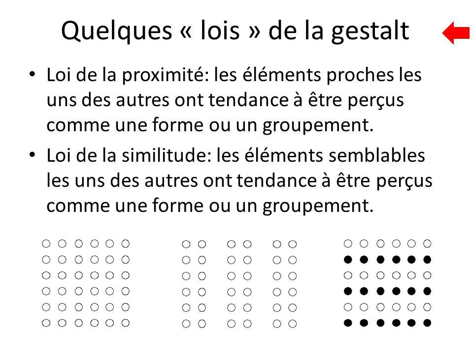 Quelques « lois » de la gestalt Loi de la proximité: les éléments proches les uns des autres ont tendance à être perçus comme une forme ou un groupeme