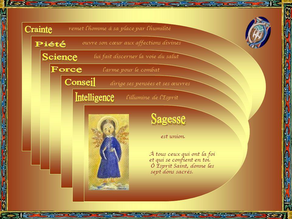 La sagesse est l'union. Or l'union avec le souverain Bien s'accomplit par la volonté.