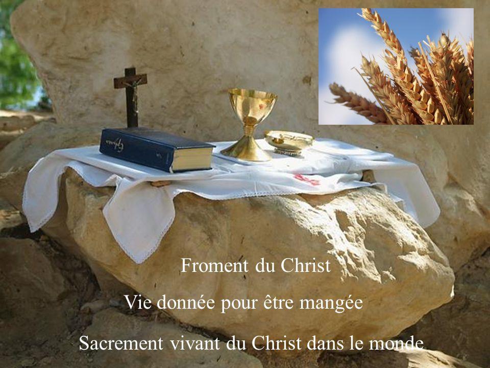 Prêt à donner sa vie pour ses brebis Bon berger du peuple qui lui a été confié Pasteur des âmes
