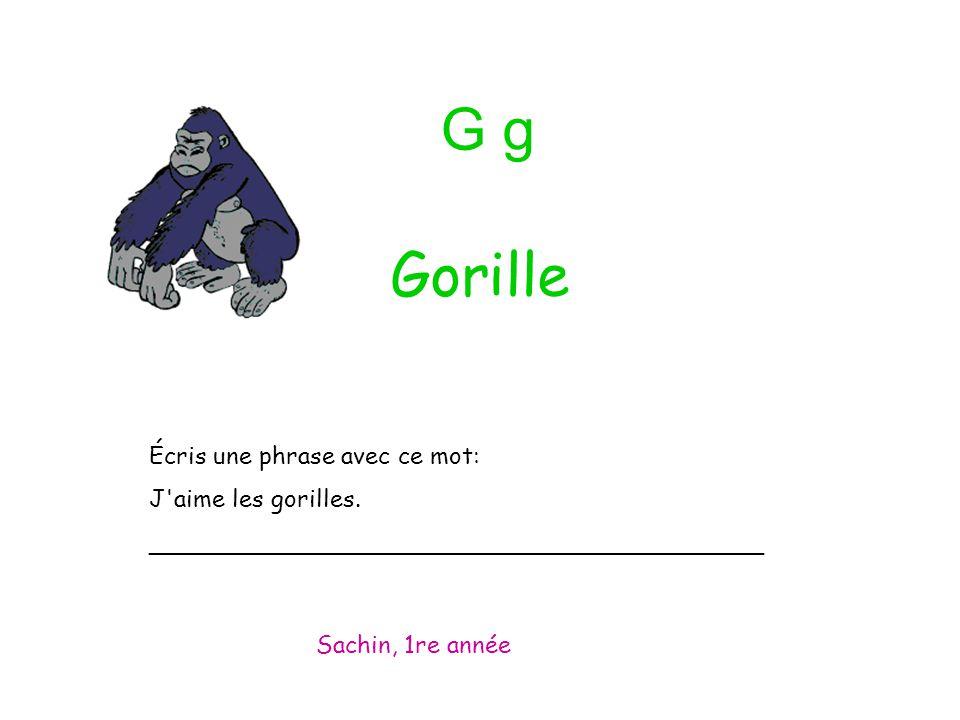G g Écris une phrase avec ce mot: J'aime les gorilles. _________________________________________ Sachin, 1re année Gorille
