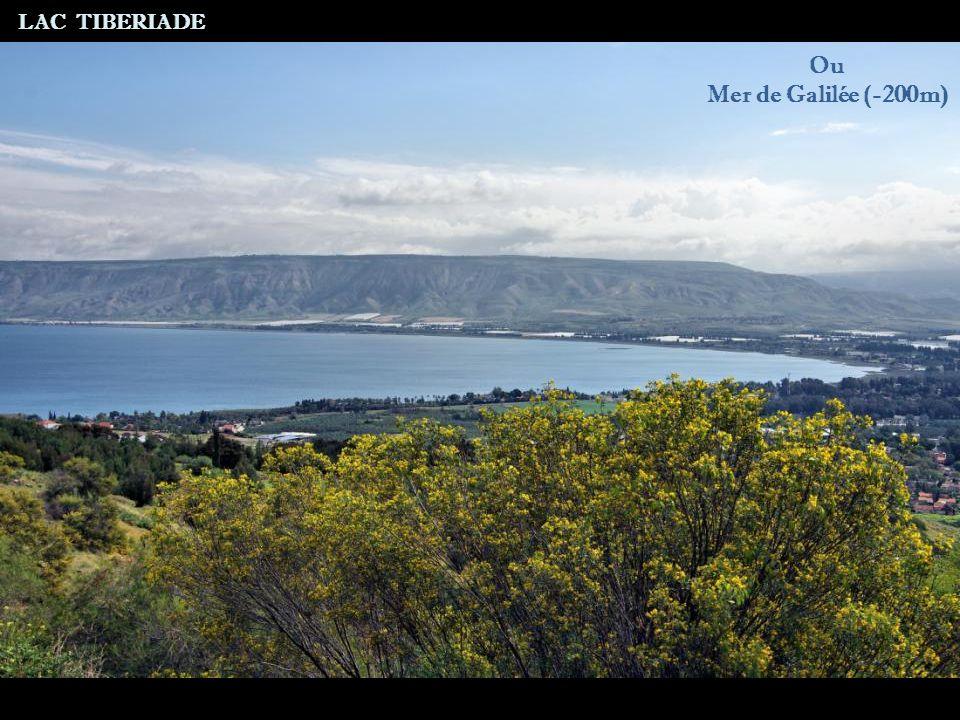 ou Mer de Galilée (-200m) LAC TIBERIADE