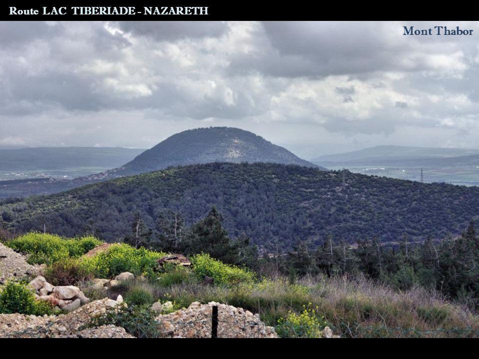 Cana Route LAC TIBERIADE - NAZARETH