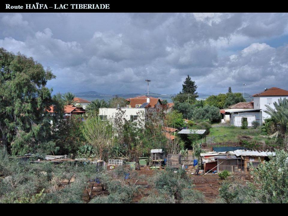 Route HAÏFA – LAC TIBERIADE
