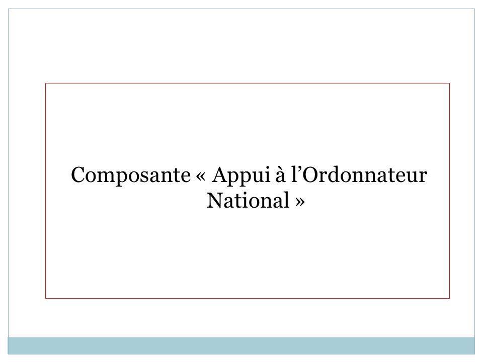 Composante « Appui à l'Ordonnateur National »