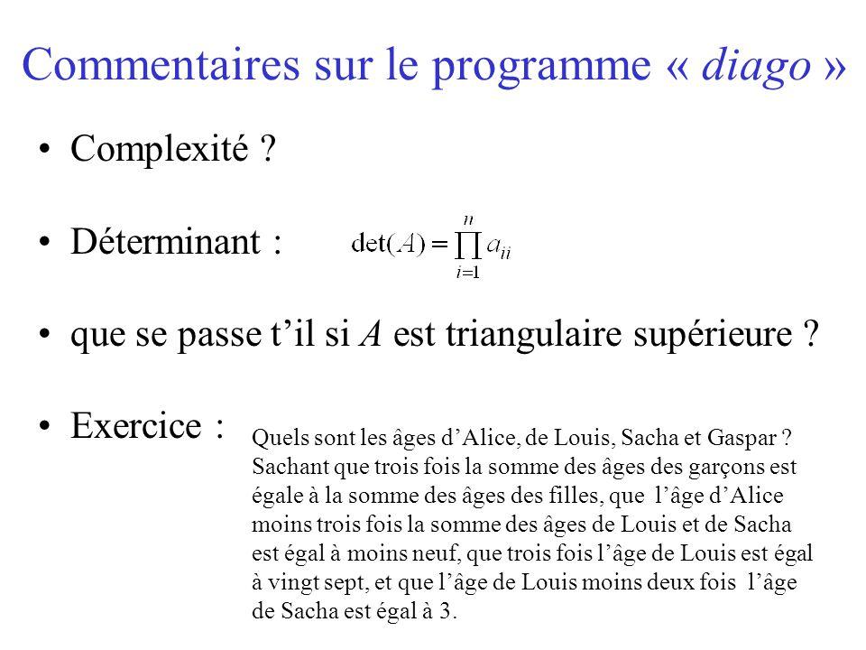 Commentaires sur le programme « diago » Complexité ? Déterminant : que se passe t'il si A est triangulaire supérieure ? Exercice : Quels sont les âges
