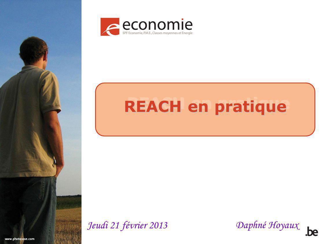 REACH en pratique Daphné Hoyaux Jeudi 21 février 2013