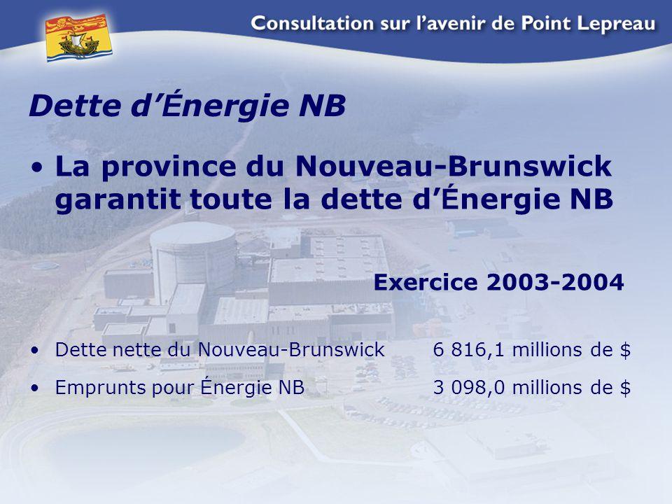 Dette d' É nergie NB La province du Nouveau-Brunswick garantit toute la dette d' É nergie NB Exercice 2003-2004 Dette nette du Nouveau-Brunswick 6 816,1 millions de $ Emprunts pour É nergie NB 3 098,0 millions de $