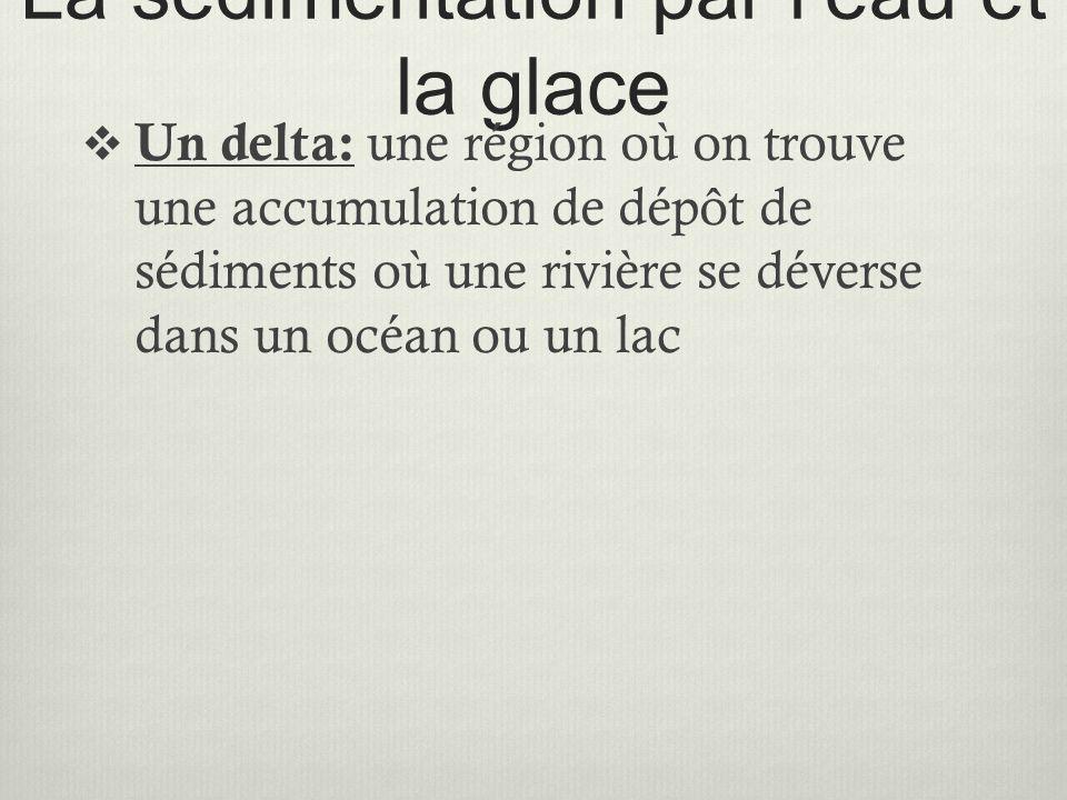La sédimentation par l'eau et la glace  Un delta: une région où on trouve une accumulation de dépôt de sédiments où une rivière se déverse dans un oc