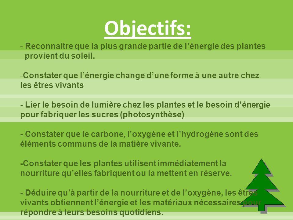 Objectifs: - Reconnaitre que la plus grande partie de l'énergie des plantes provient du soleil. -Constater que l'énergie change d'une forme à une autr