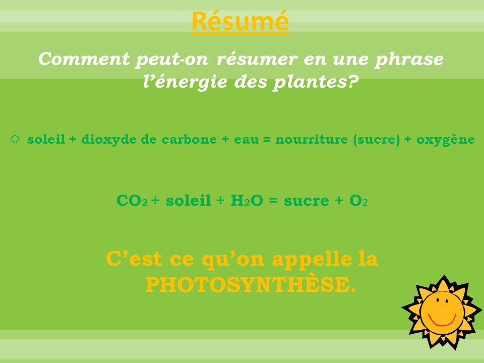 o Processus par lequel les végétaux utilisent l'énergie de la lumière pour fabriquer leur nourriture (sucre) en se servant du gaz carbonique et de l'eau.