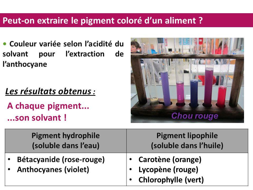 Peut-on extraire le pigment coloré d'un aliment ? Pigment hydrophile (soluble dans l'eau) Pigment lipophile (soluble dans l'huile) Bétacyanide (rose-r