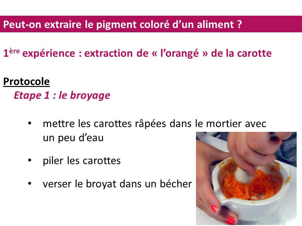 Peut-on extraire le pigment coloré d'un aliment ? 1 ère expérience : extraction de « l'orangé » de la carotte Protocole Etape 1 : le broyage mettre le
