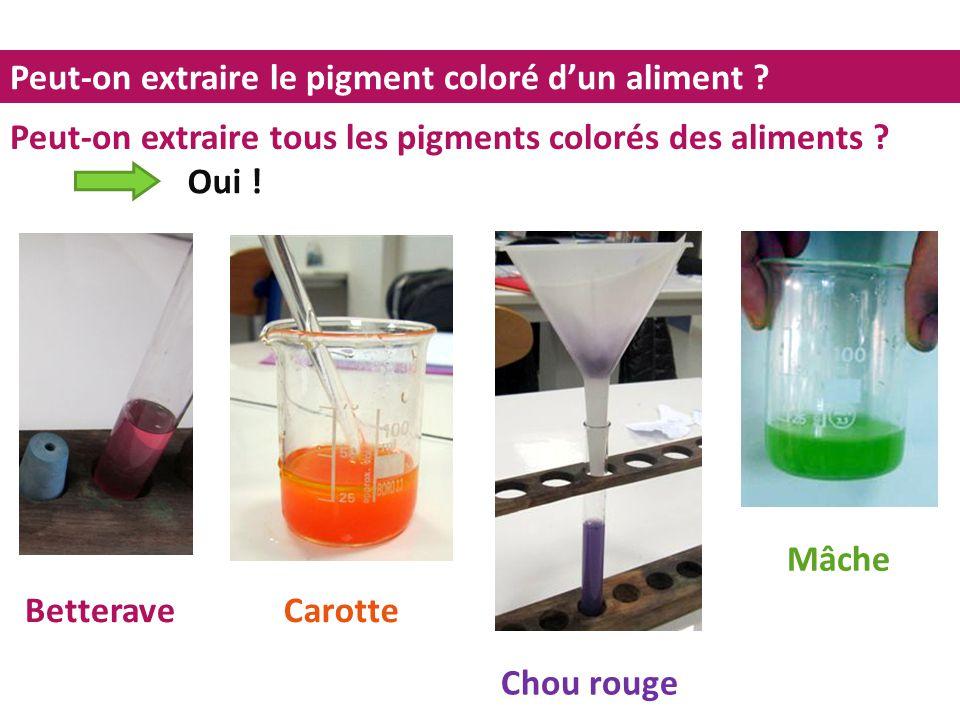 Peut-on extraire le pigment coloré d'un aliment ? Peut-on extraire tous les pigments colorés des aliments ? Betterave Mâche Chou rouge Carotte Oui !