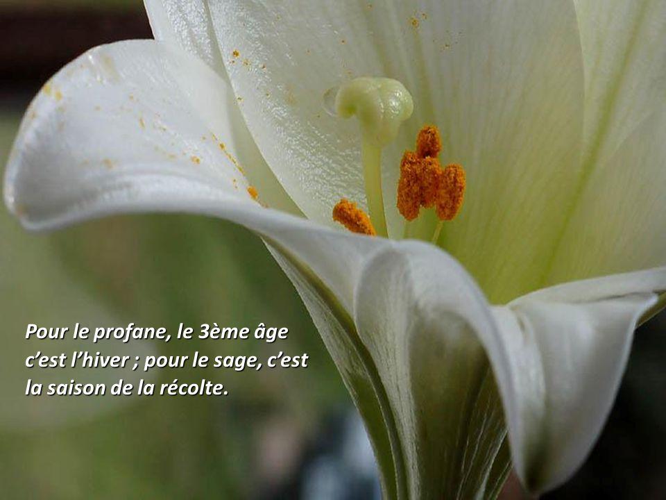 Quand nous vieillissons, la beauté se transforme en une qualité intérieure.