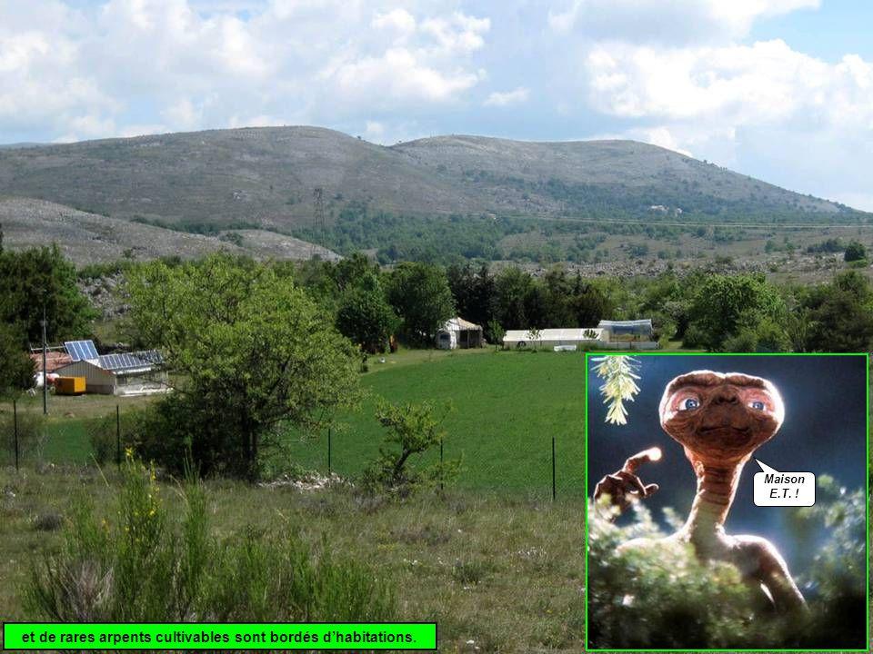 et de rares arpents cultivables sont bordés d'habitations. Maison E.T. !