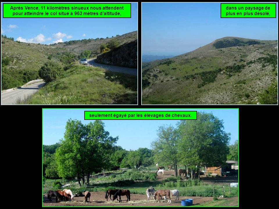Après Vence, 11 kilomètres sinueux nous attendent pour atteindre le col situé à 963 mètres d'altitude, dans un paysage de plus en plus désolé, seulement égayé par les élevages de chevaux.
