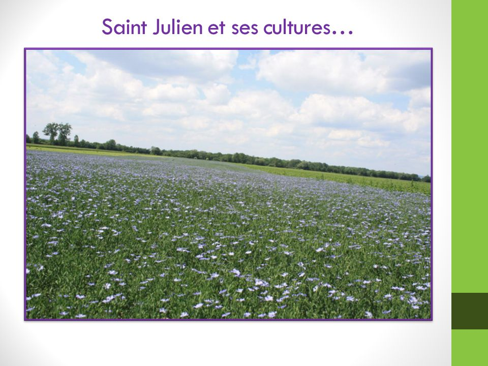 Saint Julien et ses cultures…